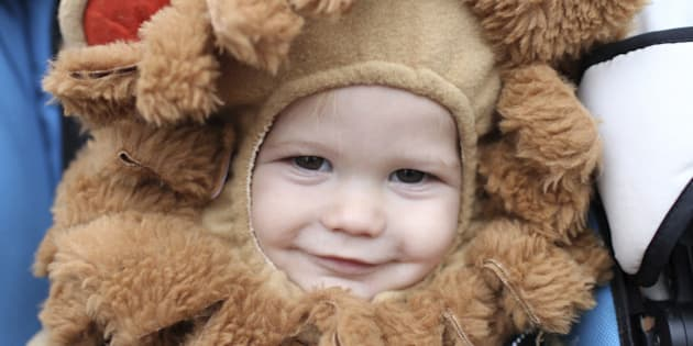Baby, child in a lion halloween costume