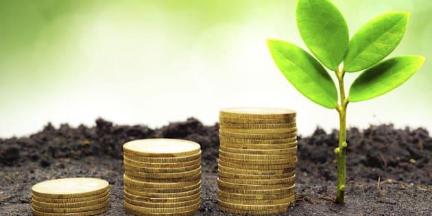 tree piles of coins with small trees / csr / good governance / green business / business ethics