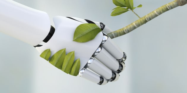 Robot hand and twig shaking hands, 3D Rendering