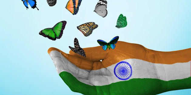 butterfly, country, flag, india, nation, tradition, culture, freedom, dream, hope, love, peace, equality, concept, creative, studio, sky, studio, fly, freedom, liberation, single hand, concept, colorful, vote, politics, charity, hope, future