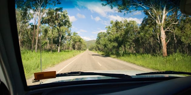 AUSTRALIA - FEBRUARY 26:  View from car of road through the Daintree Rainforest, Queensland, Australia.  (Photo by Tim Graham/Getty Images)