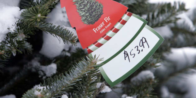 A price tag on a Fraser Fir Christmas tree is seen on a Canadian-grown tree for sale at Broadway Gardens, Tuesday, Dec. 4, 2007, in South Portland, Maine.  Canadian tree growers who sell to the U.S. are seeing their revenues drop as the Canadian dollar's value soars. (AP Photo/Robert F. Bukaty)