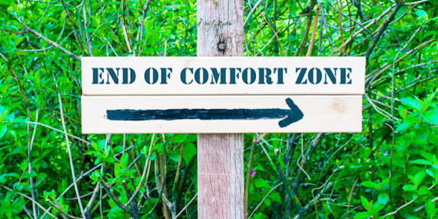 END OF COMFORT ZONE written on Directional wooden sign with arrow pointing to the right against green leaves background. Concept image with available copy space