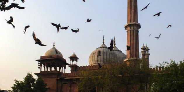 India, Uttar Pradesh, Old Delhi, Jamu Masjid mosque.