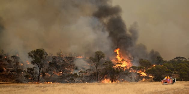 YAAPEET, AUSTRALIA - JANUARY 16:  (EUROPE AND AUSTRALASIA OUT) Bushfires burn north of Yaapeet off Goslings Road on January 16, 2014 in the Wimmera region of western Victoria. Over 65 fires are burning across the state, after several days of over 40 degree celsius temperatures and high winds in the region.  (Photo by Jake Nowakowski/Newspix/Getty Images)
