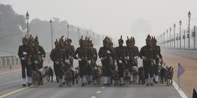 NEW DELHI, INDIA - JANUARY 17: Indian Army's Remount and Veterinary Corps (RVC) dogs trained for bomb disposal and counter-insurgency take part during rehearsal for the Republic Day Parade at Rajpath on January 17, 2016 in New Delhi, India. Annual Parade is held at Rajpath on January 26 to mark India's Republic Day Celebrations, which extends for 3 days. The parade showcases India's Defence Capability, Cultural and Social Heritage. (Photo by Arvind Yadav/Hindustan Times via Getty Images)