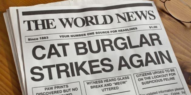 'Cat Burglar Newspaper Headline.  Newspaper, copy and creative all created by the photographer.'