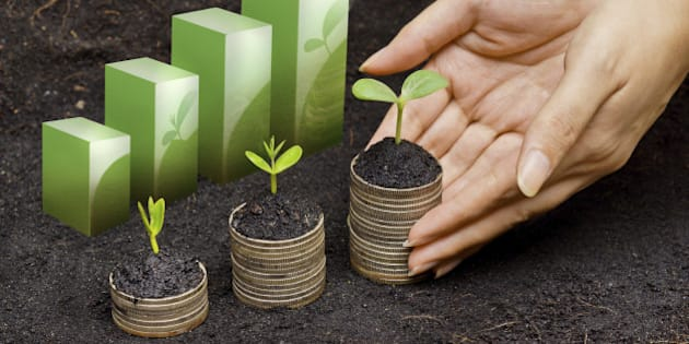hands holding tress growing on coins in germination sequence / csr / sustainable development / business growth with responsibility