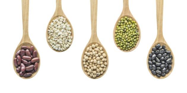 grain products include black bean, Mung Bean, Soy bean, Job's Tear and Kidney Bean