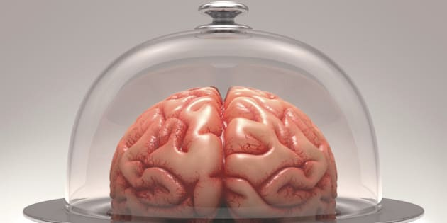 Brain over a stainless steel platter covered by a glass cover. Clipping path included..