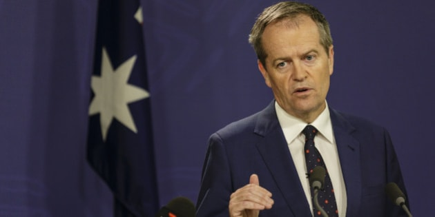SYDNEY, NEW SOUTH WALES - FEBRUARY 12:  Australian Labor Party Leader Bill Shorten on February 12, 2016 in Sydney, Australia. Human services minister Stuart Robert was stood down from ministerial duties following an investigation into a trip to China in 2014.  (Photo by Brook Mitchell/Getty Images)