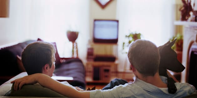 Male couple watching television with dogs, rear view