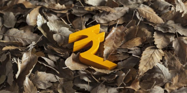 International economy money icon and currency unit on autumn leaves