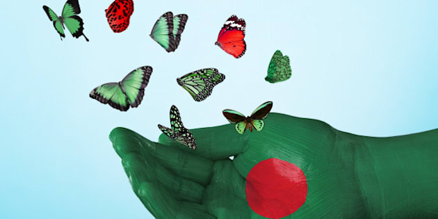 butterfly, country, flag, bangladesh, nation, tradition, culture, freedom, dream, hope, love, peace, equality, concept, creative, studio, sky, studio, fly, freedom, liberation, single hand, concept, colorful, vote, politics, charity, hope, future