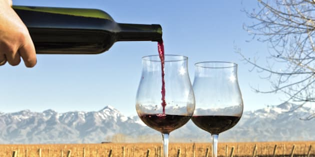 Forefront of a glasses and bottle of red wine, as a background, the vineyard and the Andes. Mendoza, Argentina.
