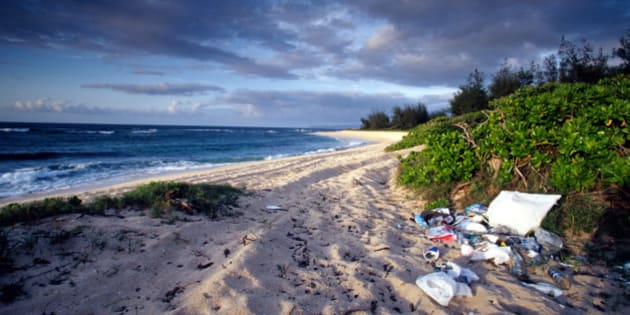 Hawaii, Oahu, Polluted Beach