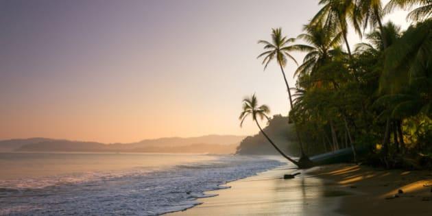 Colourful sunset on palm fringed beach, Bahia Drake (Drakes Bay), Osa Peninsula, Costa Rica