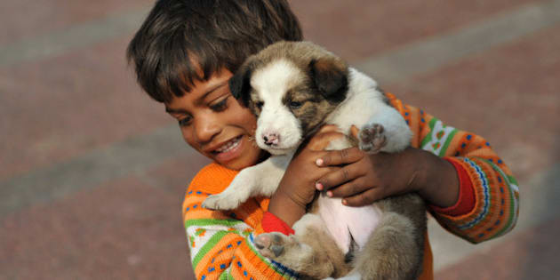 A homeless Indian child plays with a puppy in New Delhi on February 13, 2012. India is home to nearly half of the world's hungry, according to the World Food Programme, with some 40 percent of the population living below the global poverty line of less than 1.25 dollars a day. AFP PHOTO/ SAJJAD HUSSAIN (Photo credit should read SAJJAD HUSSAIN/AFP/Getty Images)