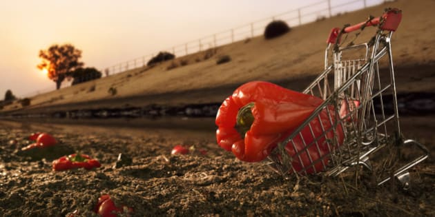 Red bell pepper in shopping cart on dirt