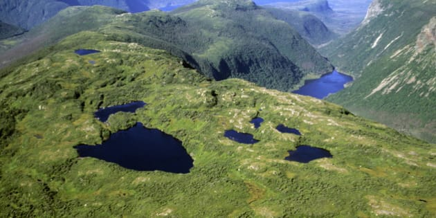 Lakes on the arctic tundra at top of Long Range Mountains. Moose habitat. Gros Morne National Park, Newfoundland, Canada