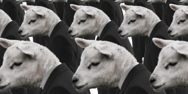 sheep like mentality