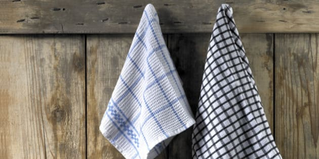 Two dishcloths hanging from an old wooden door. The dishcloths are black and white and blue and white with checks. Horizontal frame.