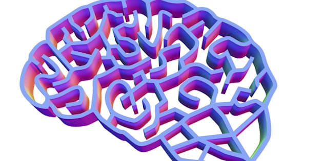 Brain complexity. Conceptual computer artwork of a brain represented as a complex maze. This could represent the complexity of the human brain, and the difficulty of researching brain conditions such as Alzheimer's disease.