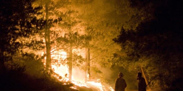 Big Sur, California. Flames move through trees and firefighters wait and watch.
