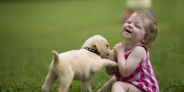 small child plays with puppy