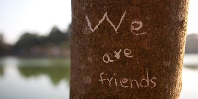 Yangon, Myanmar.  'We are friends', carved on a tree trunk on the shore of Kandawgyi Lake, a beautiful park in Yangon.