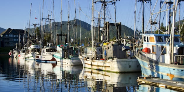 Ucluelet harbor on Vancouver Island