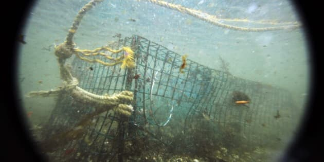 """In this Friday, Nov. 13, 2009 photo, a lost lobster trap sits on the ocean floor off Biddeford, Maine. Marine biologists say """"ghost traps"""" lost by lobstermen continue to catch lobsters as they sit untended in the cold ocean waters off Maine's coast. This winter lobstermen will grapple up gear from selected spots in the first large-scale study of ghost traps. (AP Photo/Robert F. Bukaty)"""