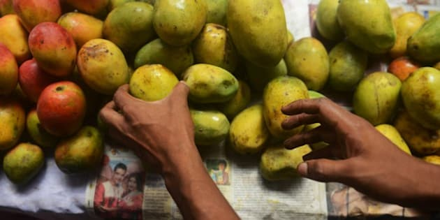An Indian shopkeeper arranges mangoes for sale during the 4th Gitanjali Mango Festival in Siliguri on June 13, 2015. More than 150 varieties of mangoes were displayed at the three-day festival hosted by the Association for Conservation & Tourism, in association with Modella Caretaker School. AFP PHOTO/Diptendu DUTTA        (Photo credit should read DIPTENDU DUTTA/AFP/Getty Images)