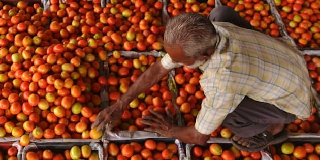 An Indian labourer fills plastic crates with tomatoes before they are repacked to be sold at a wholesale fruit and vegetable market on the outskirts of Amritsaron June 16, 2016. India's consumer prices rose faster than expected in May due to higher food costs, official figures showed, which will likely lead the central bank to hold off lowering interest rates. The inflation rate increased to 5.76 percent from a year earlier, substantially higher than the 4.8 percent recorded in March and 5.4 percent in April, reported the statistics ministry.  / AFP / NARINDER NANU        (Photo credit should read NARINDER NANU/AFP/Getty Images)