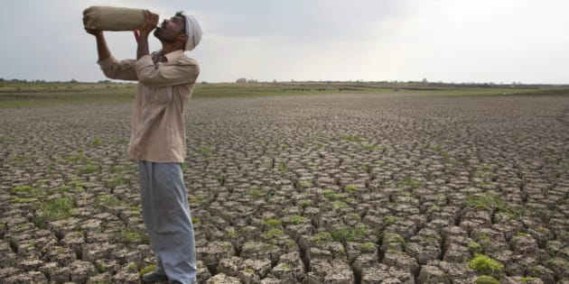 In this May 10, 2016, photo, a Shepard drinks water on the dry bed of Manjara Dam, which supplies water to Latur and nearby villages in Marathwada region, in the Indian state of Maharashtra. Failed monsoons play havoc with millions of farmers in central India leading to crippling poverty and soaring suicides. Some 400 farmers have killed themselves so far this year in the parched Marathwada region, which is home to about 19 million people.(AP Photo/Manish Swarup)