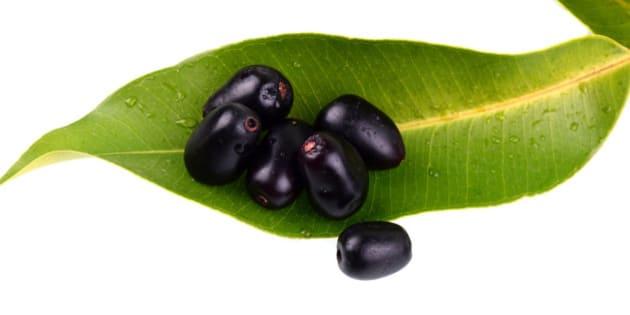 Jambul or Jamun (Syzygium cumini) with leaf isolated on white background