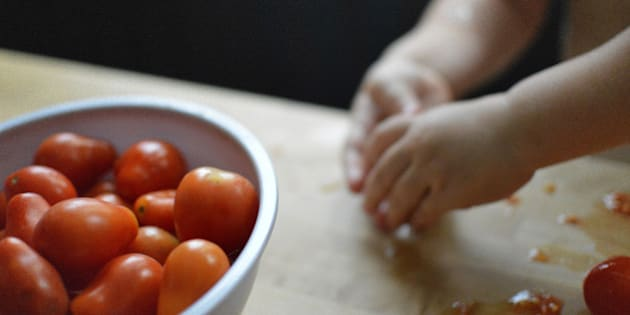 A child peeling tomatoes in on the kitchen counter top.