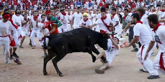 A wild cow charges at a reveller after the last running of the bulls of the San Fermin festival in Pamplona, northern Spain, July 14, 2015. Five runners were hospitalized following the run that lasted two minutes and four seconds, according to local media.  REUTERS/Joseba Etxaburu