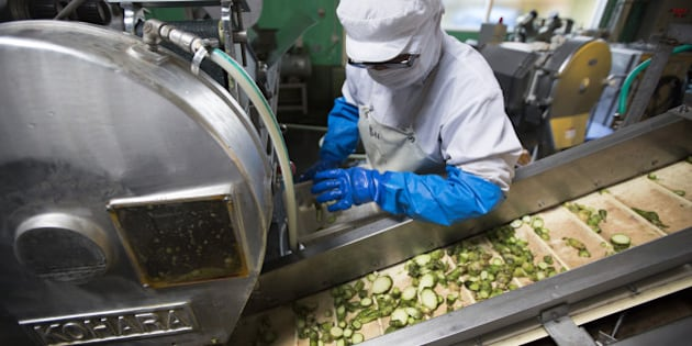 A worker checks the chopped up rhizomes of wasabi plants on the production line of the Marui Co. factory in Azumino, Nagano Prefecture, Japan, on Tuesday, May 24, 2016. Japan's economy grew slightly more than the government initially reported for the first quarter, helped by a fractional revision in private consumption and business investment that dropped less than first thought. Photographer: Tomohiro Ohsumi/Bloomberg via Getty Images