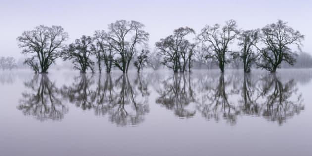 Flooded area near Santa Rosa, CA, Laguna de Santa Rosa