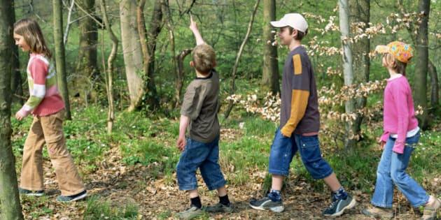 Children walking through forest