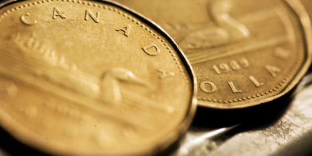 Canadian one dollar coins, also known as loonies, are displayed in Montreal, September 19, 2007. The Canadian dollar eased slightly against the U.S. dollar on Wednesday after breaching 99 U.S. cents overnight, as the hard-hit greenback recovered from Tuesday's U.S. interest rate cut and both Canadian and U.S. inflation reports came in below expectations. REUTERS/Christinne Muschi (CANADA)