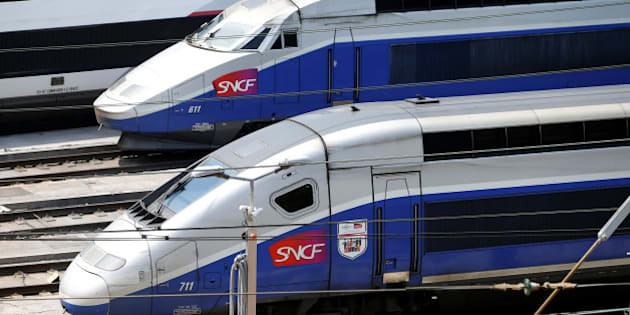 TGV trains (high speed train) are parked at a SNCF depot station in Charenton-le-Pont near Paris, France, during a national railway strike by French railway unions workers from the France's rail-operator SNCF, June 7, 2016.  REUTERS/Charles Platiau
