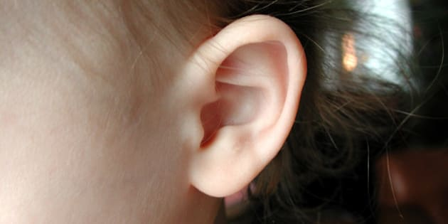 Up close picture of a 16 month old's ear.
