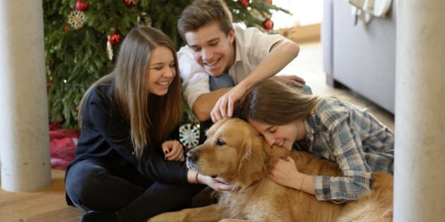 Three young friends cuddling with Golden Retriever on the floor of living room at Christmas time