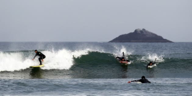 Men surf on Saint Claire beach, as White Island is seen in the back, on the coast of Dunedin, September 7, 2011.  REUTERS/Marcos Brindicci (NEW ZEALAND - Tags: ENVIRONMENT TRAVEL)