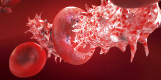 Blood cell is attacked by bacteria and viruses