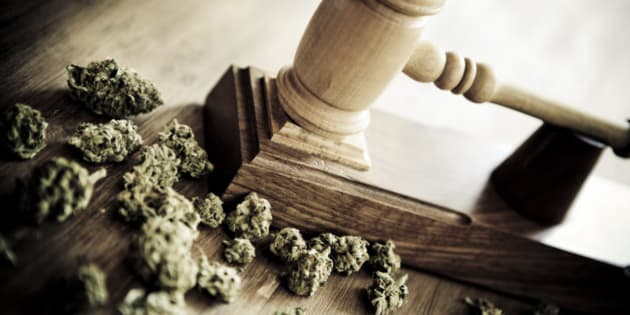 Gavel and marijuana. Concept about drug vs justice.