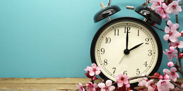 Pink Blossoms and an Alarm Clock on an Old Wooden Table