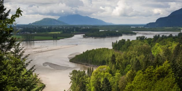 The Frazier River is an important salmon habitat for the lower mainland of British Columbia. A lovely scenic river.